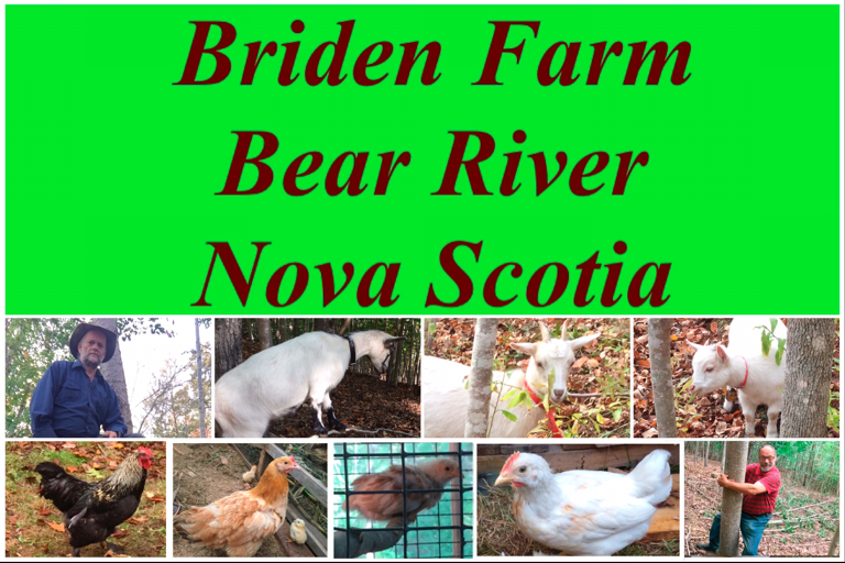 Briden Farm Sign