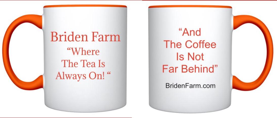 Briden Farm Mug