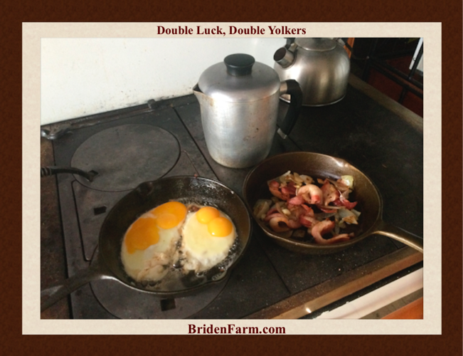 Double Lucky Double Yolkers