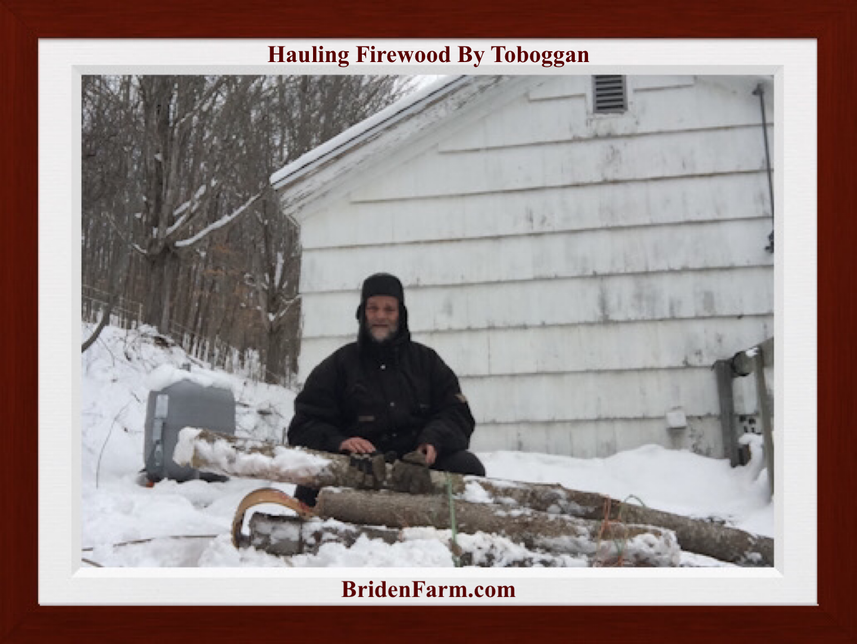 Hauling Firewood By Toboggan