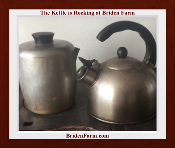 The Kettle is Rocking at Briden Farm