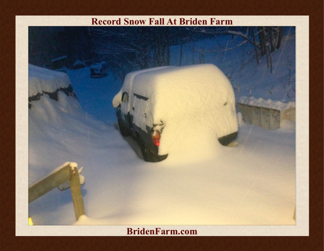 Record Snow Fall At Briden Farm