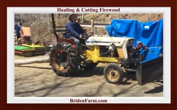 Hauling And Cutting Firewood