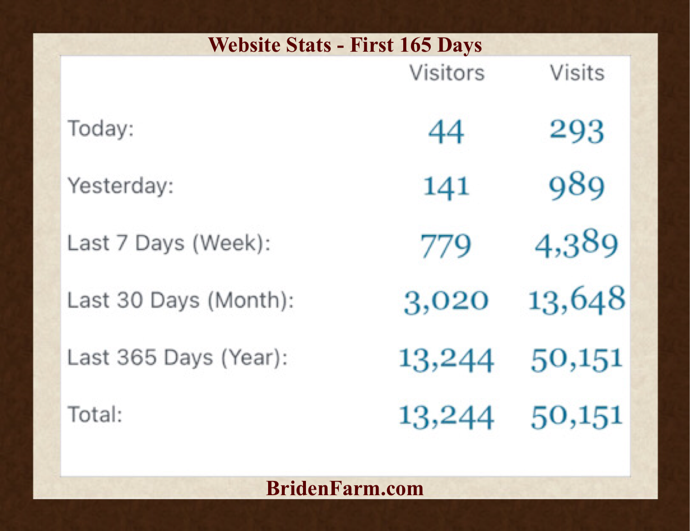 Website Stats First 165 Days