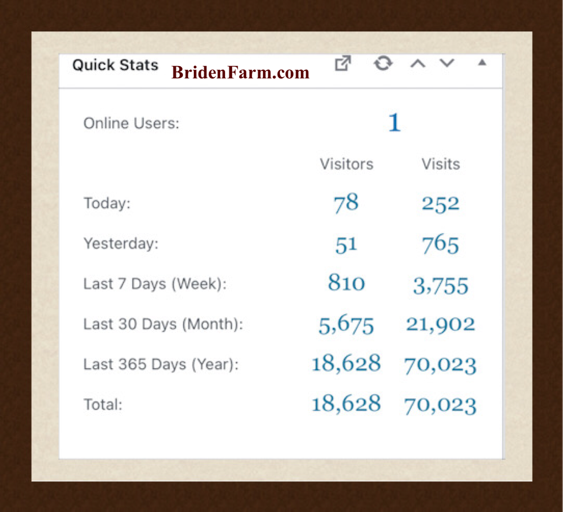 70,000 Visits in 6 Months