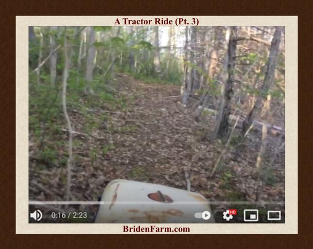 A Tractor Ride at Briden Farm (Pt. 3)