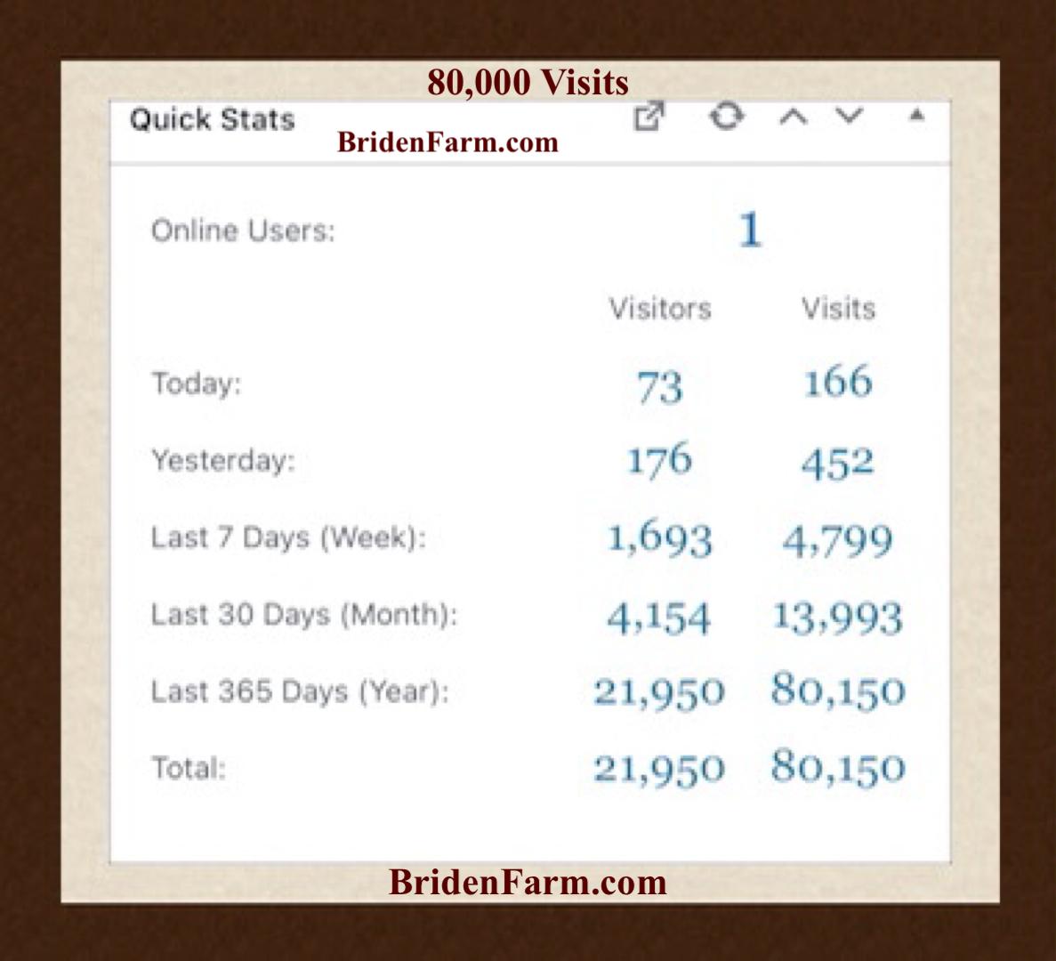 80,000 Visits
