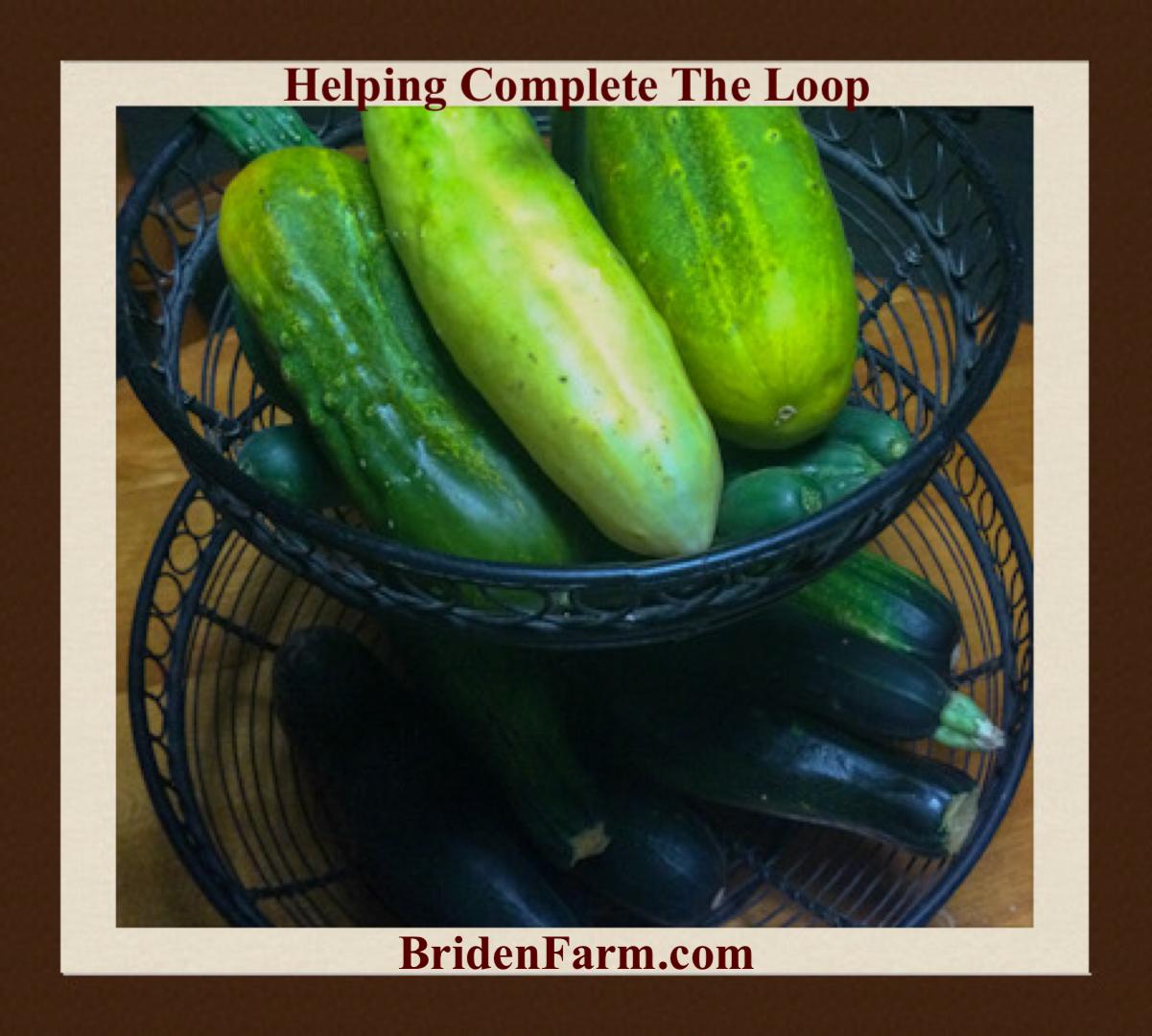 Helping Complete The Loop